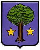 amillano-allin.escudo.jpg