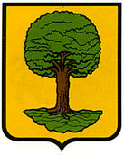 anoz-ezcabarte.escudo.jpg
