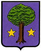 arbeiza-allin.escudo.jpg