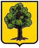 arruazu.escudo.jpg