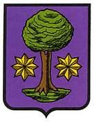cenoz-ulzama.escudo.jpg