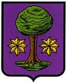 elzaburu-ulzama-.escudo.jpg