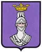 espinal-erro.escudo.jpg