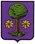 gorronz-olano-ulzama.escudo.jpg