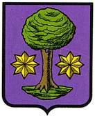 guerendiain-ulzama.escudo.jpg