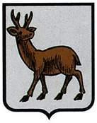 ibargoiti.escudo.jpg