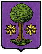 ilarregui-ulzama.escudo.jpg