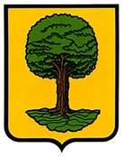 mendaza.escudo.jpg