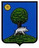 santesteban.escudo.jpg