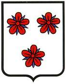 zizur-mayor.escudo.jpg