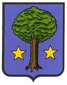 zubielqui-allin.escudo.jpg
